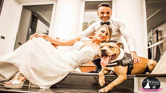 matrimonio con il tuo cane
