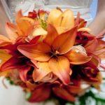 10 Bouquet da sposa con i fiori di stagione e significato